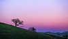 January 31, 2015 - a sunset to end January