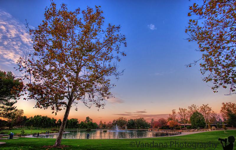 December 19, 2016 - Sunset at Heather Farm Park
