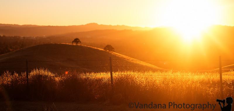October 28, 2015 - Warm California light