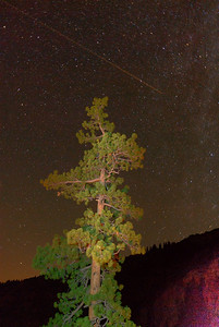 © Joseph Dougherty. All rights reserved.   Camping beside the trail to Kennedy Meadows.  A satellite leaves a trail on a long exposure as it travels across the Milky Way.