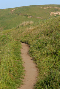 © Joseph Dougherty. All rights reserved.  Trail to Chimney Rock, at Point Reyes National Seashore
