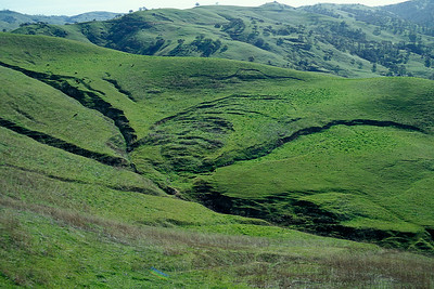 © Joseph Dougherty. All rights reserved.   Old Mines Road, Livermore, Contra Costa County.