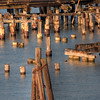 © Joseph Dougherty. All rights reserved.  Abandoned pier and wharf pilings at the mouth of the San Joaquin Delta as it runs into San Francisco Bay.