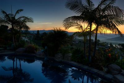 Sunrise through palms.