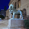 A lion guards the entrance of the Art Institute.