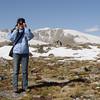 Alpine Tundra on Mt Goliath.