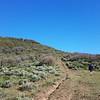 Overlook Ranch