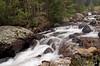 just a roadside creek in RMNP