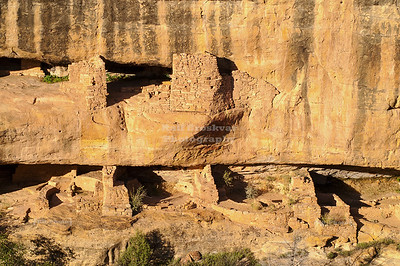 Cliff dwellings at sunset at Mesa Verde National Park