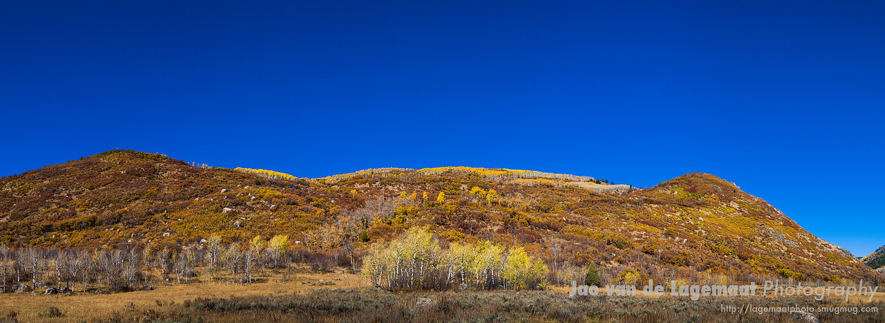 Fall Color in Mad Creek