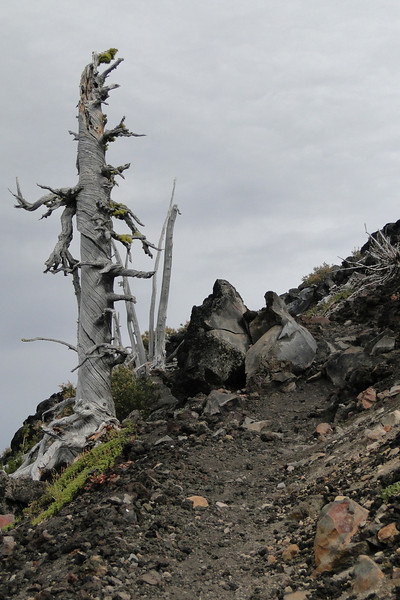Wizard Island Summit Trail.