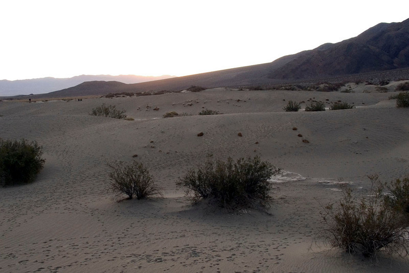 Dunes near Stovepipe Wells just before sunrise