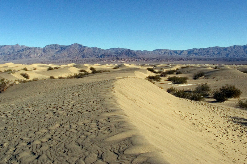 Dunes near Stovepipe Wells