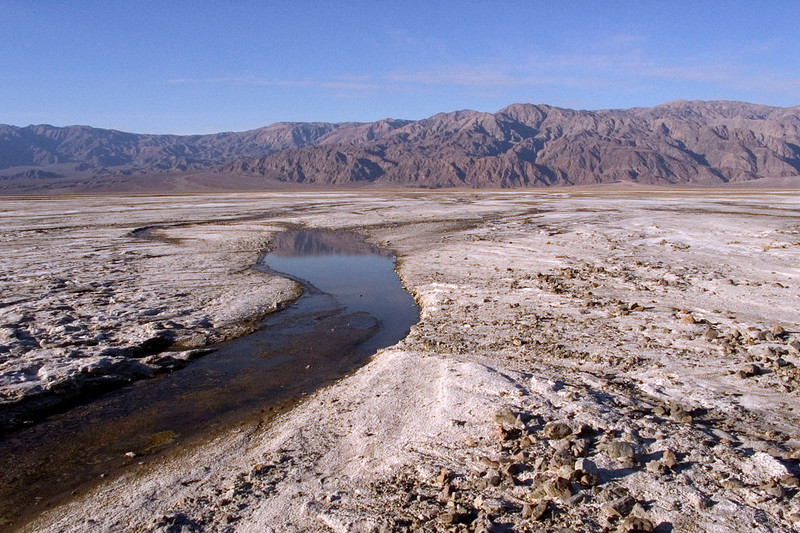 Water in the desert (near Furnace Creek)