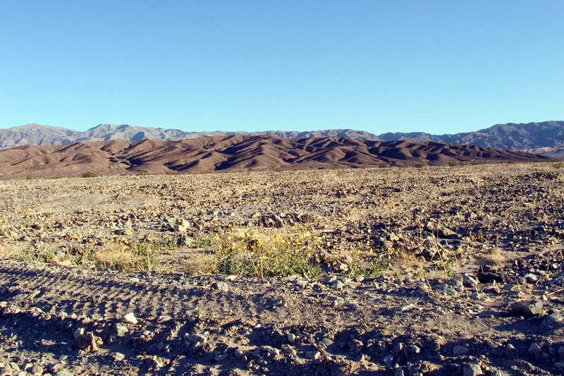 The gravel desert near Furnace Creek