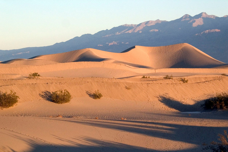 Dunes near Stovepipe Wells at sunrise