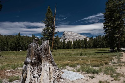 Scenics-Yosemite
