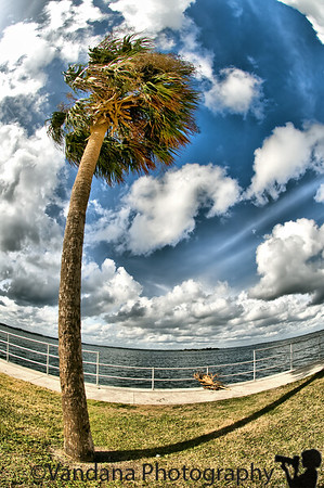 Florida, December 2009
