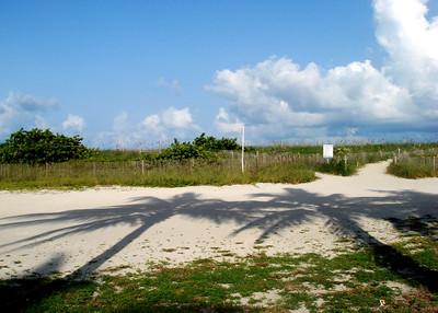 2006-08-02  South Beach Miami