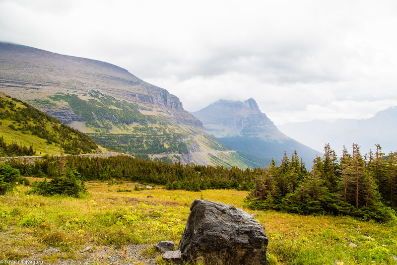 Logan Pass (Elevation 6,646 ft)