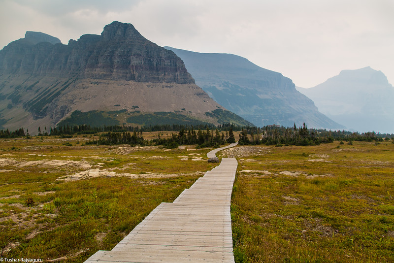 Hidden Lake Trail, Logan Pass