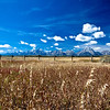 Grand Teton National Park :