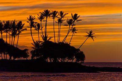 Hawaii 11/2011