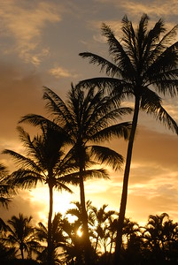© Joseph Dougherty. All rights reserved.   Sunrise at Turtle Bay, north shore of Oahu.
