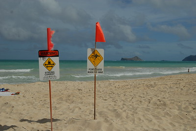 © Joseph Dougherty. All rights reserved.  Warning signs and flags inform swimmers and waders of risks on tropical sandy beaches.   The beach at Bellows Air Station.  Oahu, Hawaii.