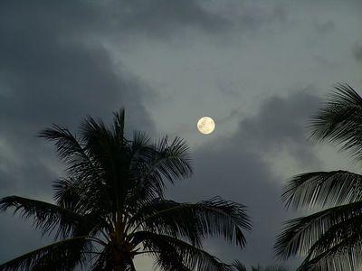 Moon over Hawaii,  Haleiwa, Hawaii