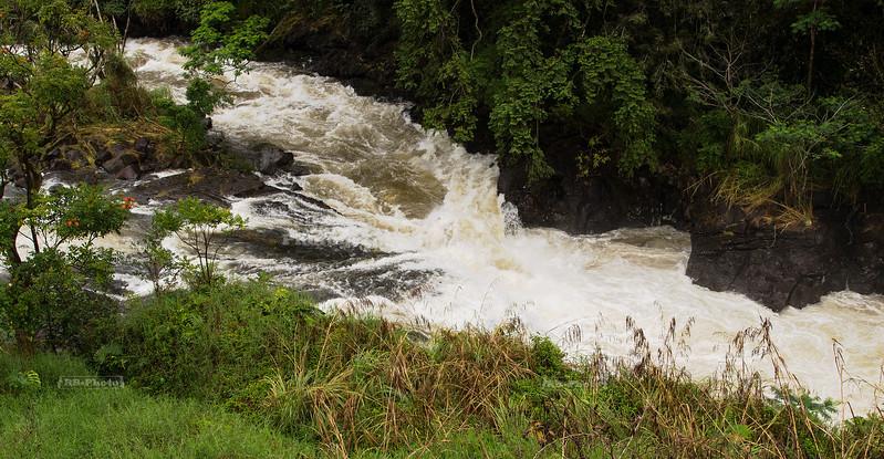 Rapids below Rainbow Falls, Hawaii