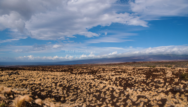 The dry side of the Big island