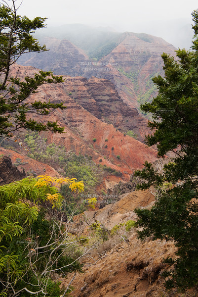 Waimea Canyon on Kauai Island, Hawaii