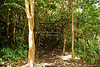 Pipiwai Trail on Maui Island, Hawaii