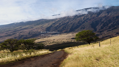 Maui Circle Tour