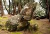 Phallic Rock in Pala'au State Park Molokai