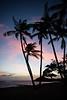 Hawai'ian Sunset on Moloka'i