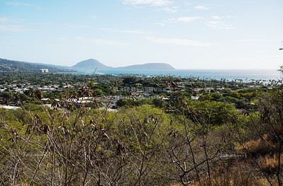Koko Crater as seen from Diamond Head Crater