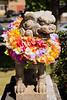 Komainu with Hawaiian Flower Leis