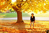 October 24, 2010 - the wish tree