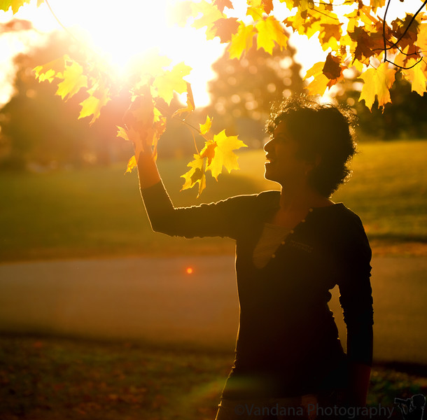 October 21, 2010 - Leaves of gold