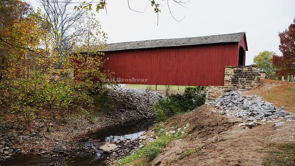 Covered bridge over Little Mary's river near Chester, Illinois