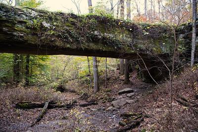 Pomona Natural Bridge in Shawnee National Forest, Illinois, USA