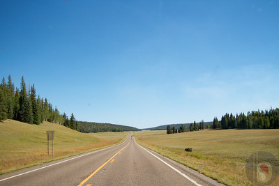 Driving to Kaibab National Forest – near Kaibab lodge.