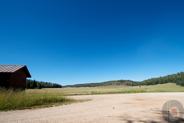 Kaibab National Forest – View from the Kaibab lodge.