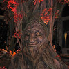 I can't recall if this tree talked liked the one at Disneyworld but it was animated.  In the back lobby of the Bellagio.<br /> <br /> Vegas 2008-09 take 2