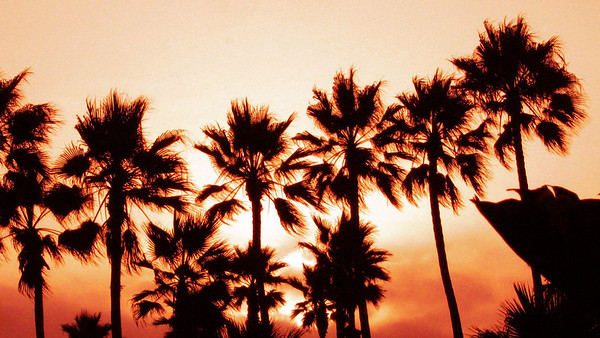 Malibu and Venice Beach 08