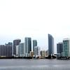 Miami<br /> Taken By: Ciara Mulvaney