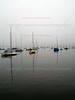Sailboats in Morning Fog