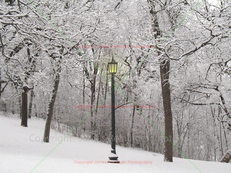 Street Lamp in Snow
